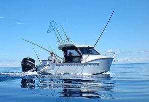 cabin-cruiser-pesca-sportiva