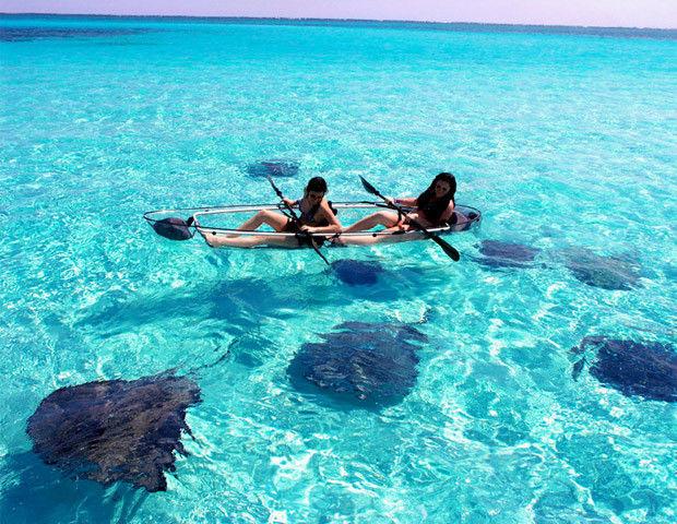 Molokini kayak trasparente