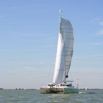Catamarano / da crociera / con poppa aperta / con 2 cabine