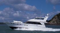 Motor-yacht da crociera / con fly chiuso / con scafo planante