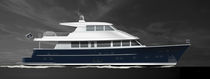 Motor-yacht con fly chiuso / con scafo dislocante