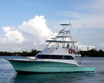 Motor-yacht da pesca sportiva / con fly / con scafo planante / su misura