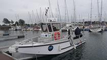 Barca di supporto per immersione fuoribordo / in alluminio