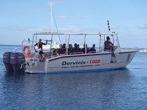 Barca open fuoribordo / da immersione