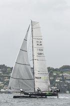 Catamarano / da corsa / con foil