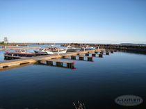 Pontile per porto / galleggiante / di ormeggio / per marina