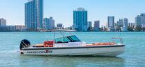 Barca open fuoribordo / con console centrale / open / max. 8 persone