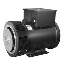alternatore per barche  Weg Electric Motors Corp.