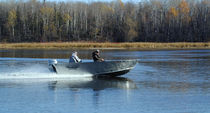 barca da pesca sportiva : barca open (in alluminio) 18 Lake Assault Custom Boats