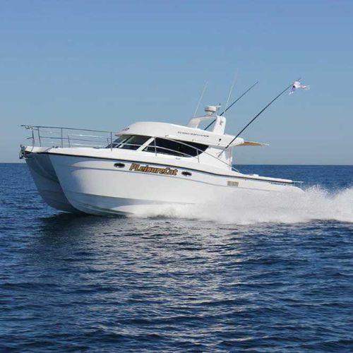 cabinato catamarano / fuoribordo / diesel / bimotore
