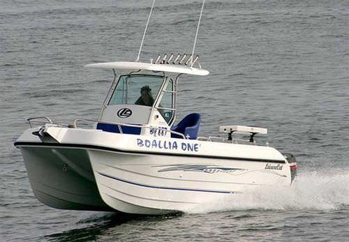 walkaround catamarano / fuoribordo / bimotore / con console centrale