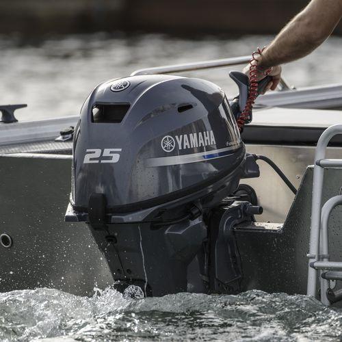 motore da diporto / per barca professionale / fuoribordo / benzina