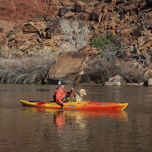 kayak a ponte / rigido / da turismo / da escursione