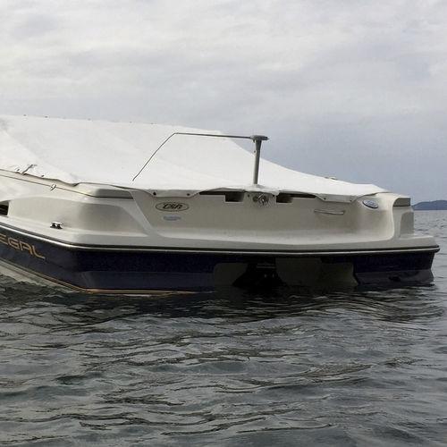 dissuasore per uccelli per barca / elettrico