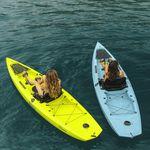 kayak sit-on-top / rigido / da pesca / 1 posto