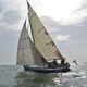code 0 / per barca a vela da crociera / triradiale / su avvolgitore