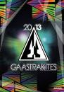 2013 Gaastra Kite Brochure