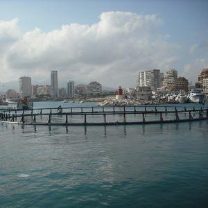 gabbia per pesci per acquacoltura / in PEHD / rotonda / flottante