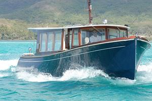 barca professionale taxi acqueo / entrobordo
