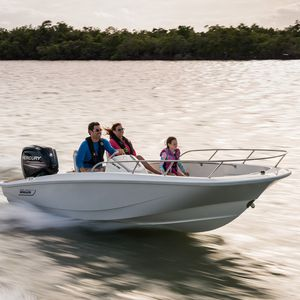 barca open fuoribordo / open / con console laterale / da pesca sportiva