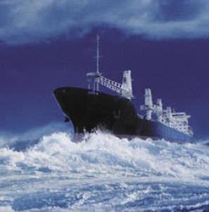 rivestimento protettivo elastomero antifouling per barca professionale / per nave commerciale / autopulente / multiuso