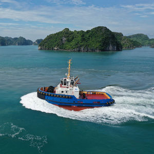 barca da lavoro