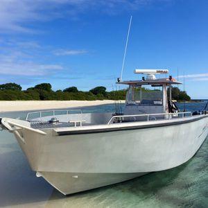 runabout fuoribordo / bimotore / con console centrale / da pesca sportiva