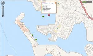 software di gestione di flotta