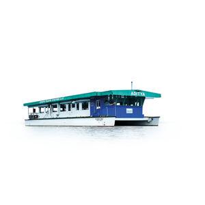 barca professionale barca per trasporto passeggeri / catamarano / elettrosolare / a zero emissioni
