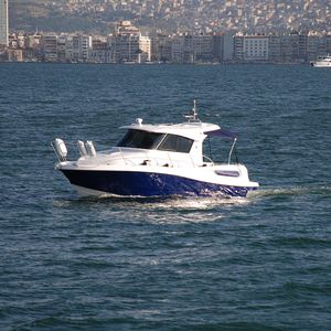 cabin-cruiser entrobordo / hard-top / in fibra di vetro / tradizionale