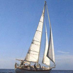 randa / vela di prua / per barca a vela da crociera / cross-cut