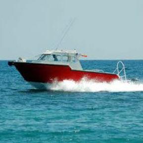 barca professionale barca di supporto per immersioni / fuoribordo / in alluminio