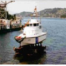 barca professionale pilotina / entrobordo / diesel