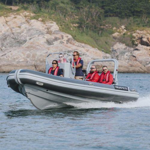 barca professionale patrol boat / barca da lavoro / fuoribordo / in alluminio