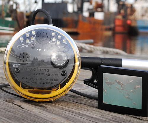 telecamera ad uso professionale / subacquea / di ispezione / HD