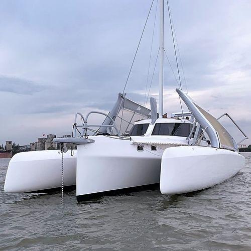 sailing-yacht trimarano - Rapido Trimarans Limited