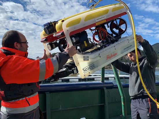 Operatori subacquei che preparano il Falcon per i compiti di ispezione.