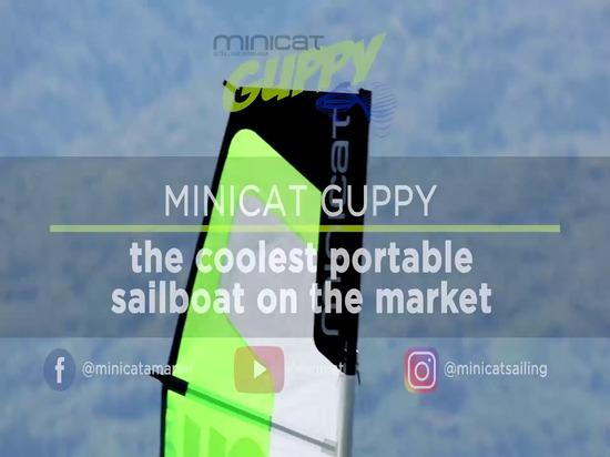 MiniCat GUPPY