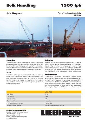 Job Report : Bulk Handling PDF