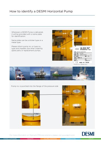 How to identify a DESMI Horizontal pump